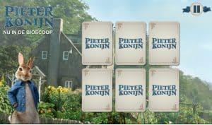 Pieter Konijn Memory
