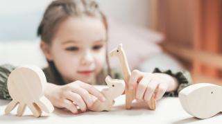waarom houten speelgoed