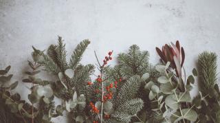 wat te doen met kerstvakantie